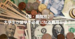 【国・期間別】大学生が留学で必要になる費用とは?